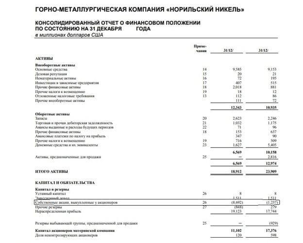 Рис. 1. Отображение казначейских акций в балансовом отчёте