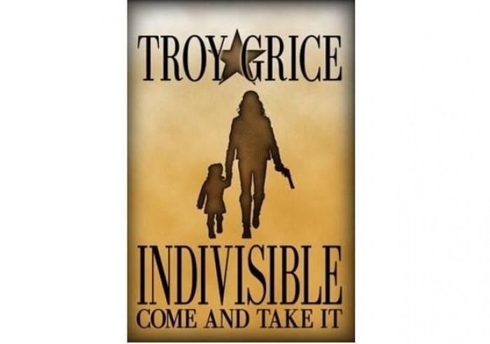 Обложка англоязычного издания романа Троя Грайса «Единая и неделимая»