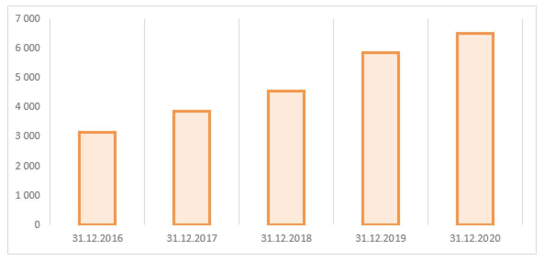 Рис. 5. Источник: финансовая отчётность ПАО «ТНС энерго Ярославль»