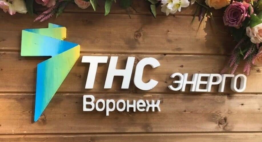 Рис. 1. Источник: сайт ПАО «ТНС энерго Воронеж»