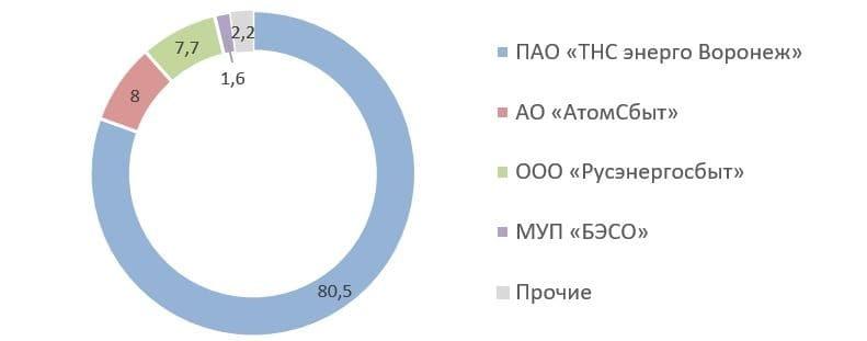 Рис. 3. Источник: сайт ПАО «ТНС энерго Воронеж»