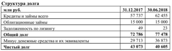 Рис. 8. Структура долга «Группы ЛСР»